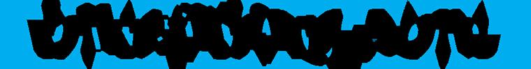 logo-sistemas-bikefitting